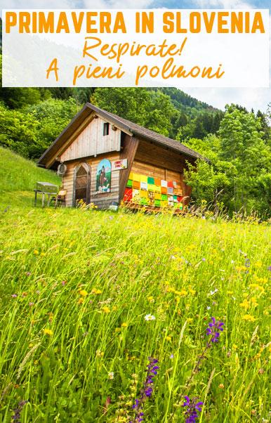 Slovenija Zdravilišča v Portorožu Slovenija Velikonočni 25 April 1 Maj