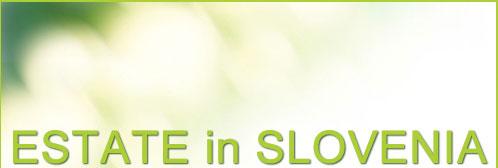 slovenia terme offerte vacanze estate 2015 01