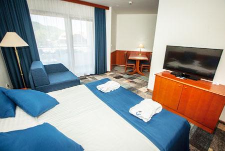 Отель Топлице