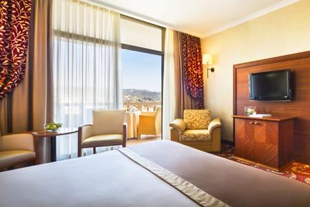रिमिसेंस प्रीमियम होटल मेट्रोपोल