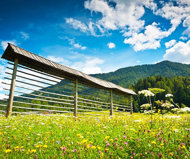 Slovenia Benessere Offerte Montagna