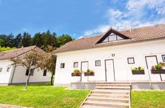מבצעים בסלובניה: טרמה אולימיה - חורף ואביב במלון ריביירה
